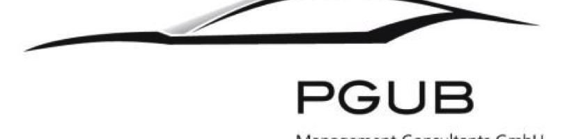 PGUB Management Consultants